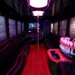 Party Bus & Limo